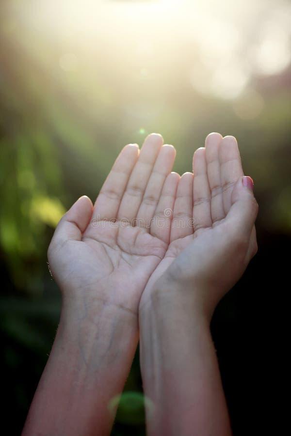 Close up de rezar as mãos fotografia de stock royalty free