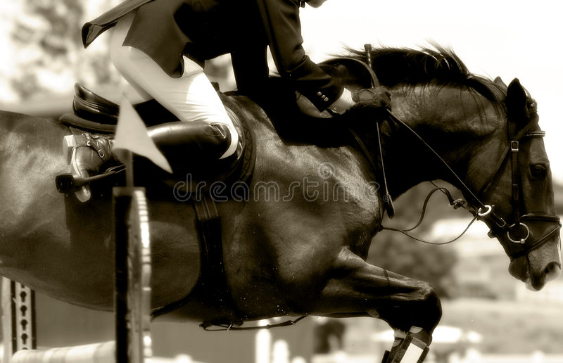 Close-up de salto #2 da mostra equestre (Sepia)) imagens de stock royalty free