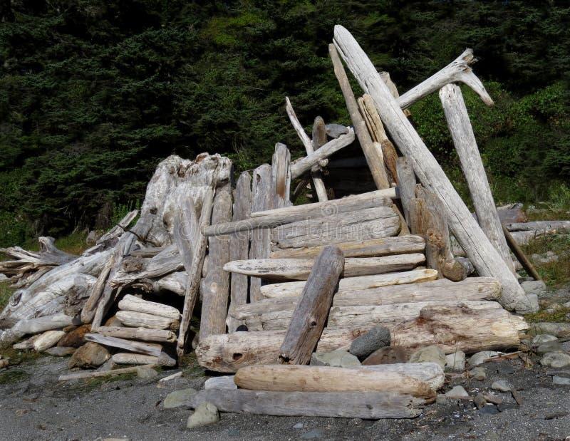 Close-up de um abrigo da madeira lançada à costa fotos de stock