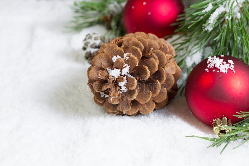 Close up de um cone do pinho na neve com ramo de pinheiro e Ornamen imagens de stock
