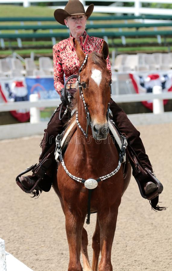 Close-up de um idoso em um cavalo na mostra do cavalo da caridade de Germantown imagens de stock royalty free