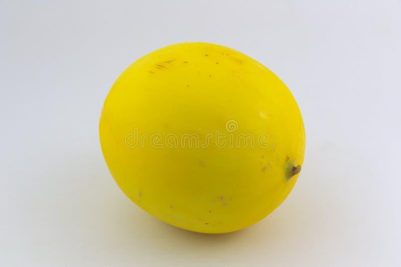 Close-up de um melão dourado no fundo neutro branco imagens de stock royalty free
