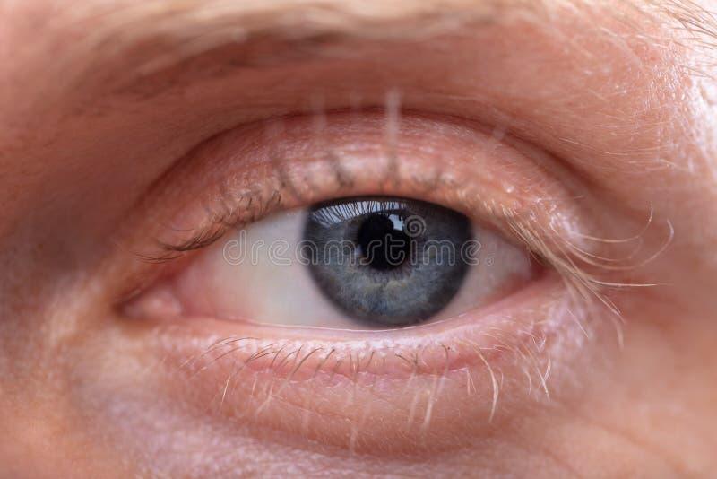 Close-up de um olho do ` s do homem imagens de stock royalty free