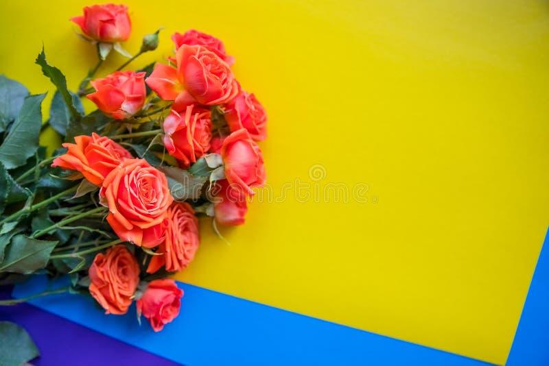 Close-up de um ramalhete bonito de rosas alaranjadas Isolado no fundo colorido brilhante Cores azuis e roxas amarelas fotos de stock