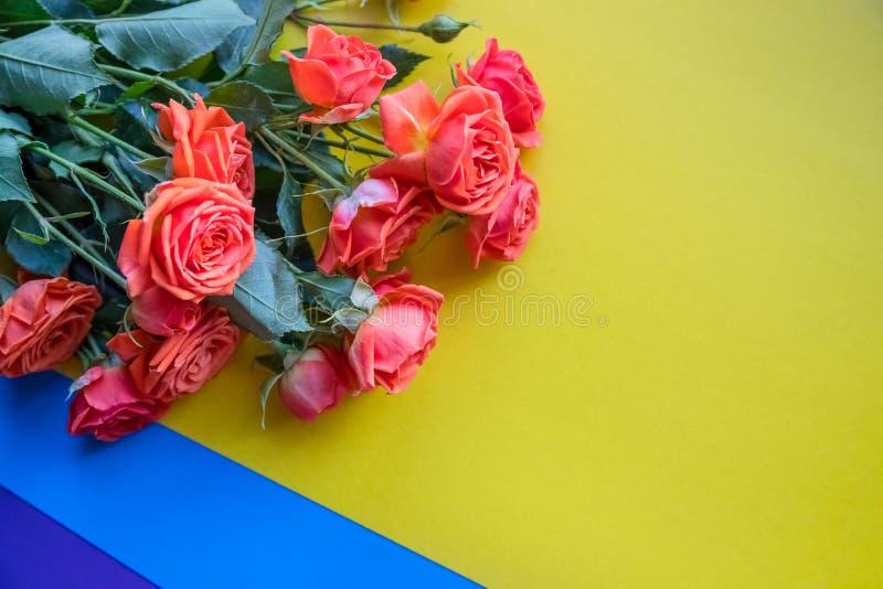 Close-up de um ramalhete bonito de rosas alaranjadas Isolado no fundo colorido brilhante Cores azuis e roxas amarelas foto de stock royalty free