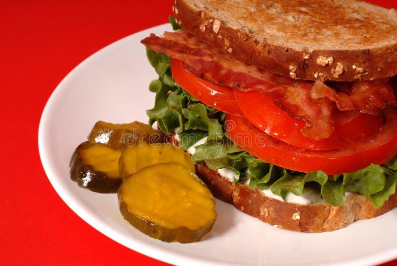 Close up de um sanduíche do bacon, da alface e do tomate com salmouras, com referência a fotos de stock royalty free