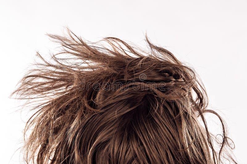 Close up de uma cabeça da cama da manhã com um cabelo desarrumado natural de trás do homem novo em seu 20s, isolado no branco imagens de stock