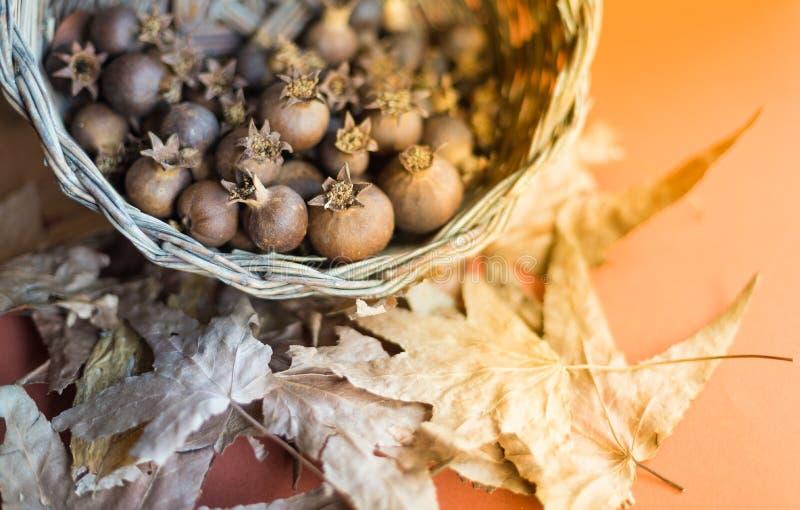 Close-up de uma cesta completamente de romã secadas, em vagabundos de um outono fotografia de stock royalty free