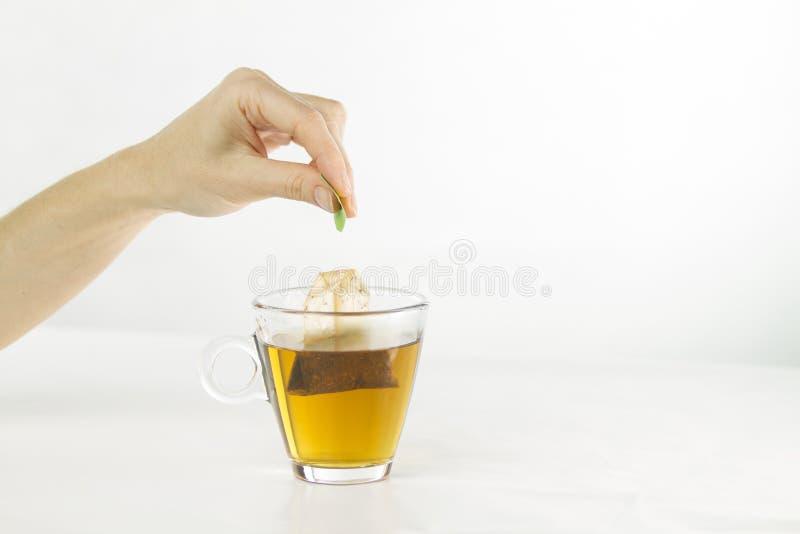 Close up de uma mão da mulher que mergulha um saquinho de chá em um copo de vidro completamente da água com efeitos vermelho-colo foto de stock