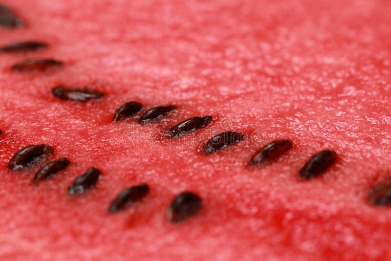 Close-up de uma melancia fotos de stock