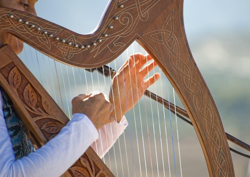 Close up de uma senhora nova que joga uma harpa foto de stock