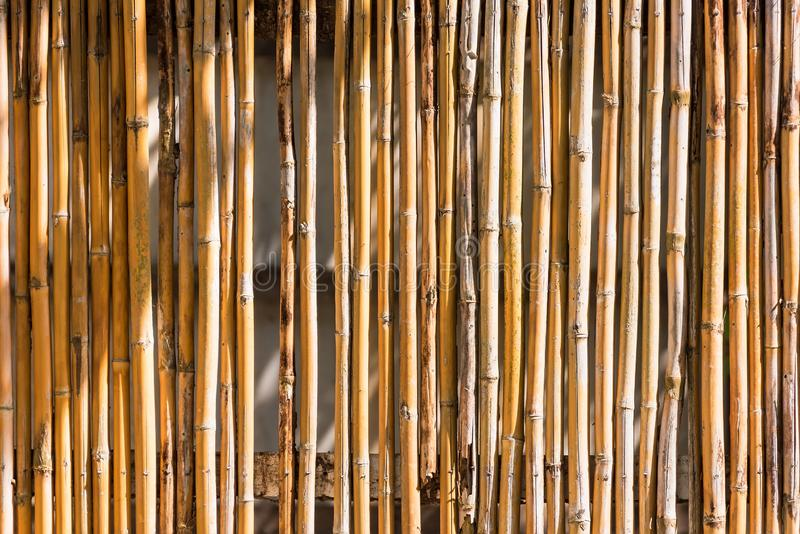 Close up decorative old bamboo wood of fence wall background. Pattern, nature, texture, natural, abstract, brown, plant, asian, design, decoration, textured stock image