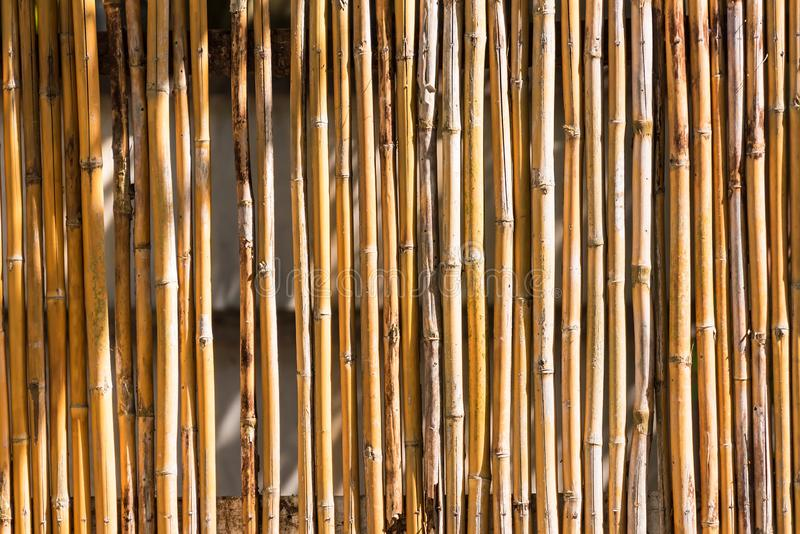 Close up decorative old bamboo wood of fence wall background. Pattern, nature, texture, natural, abstract, brown, plant, asian, design, decoration, textured royalty free stock photo