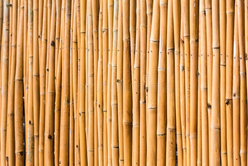 Close up decorative old bamboo wood of fence wall background. Pattern, nature, texture, natural, abstract, brown, plant, asian, design, decoration, textured stock images