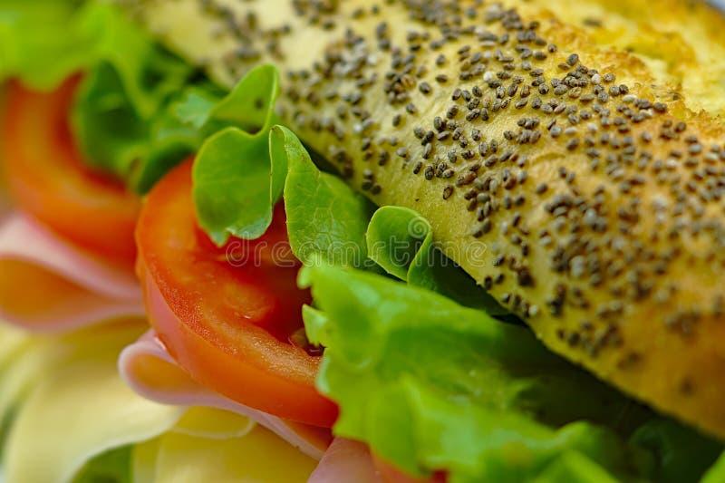Close up delicioso do sanduíche da alface do tomate do queijo do presunto foto de stock