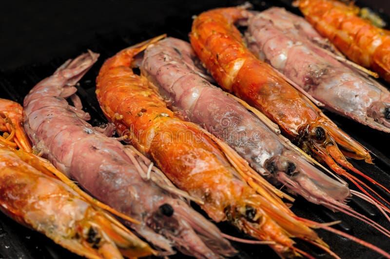 Close up delicioso marinho vermelho do jantar da dieta da guloseima do langoustine do rosa da mistura fundo culinário do grande imagens de stock royalty free