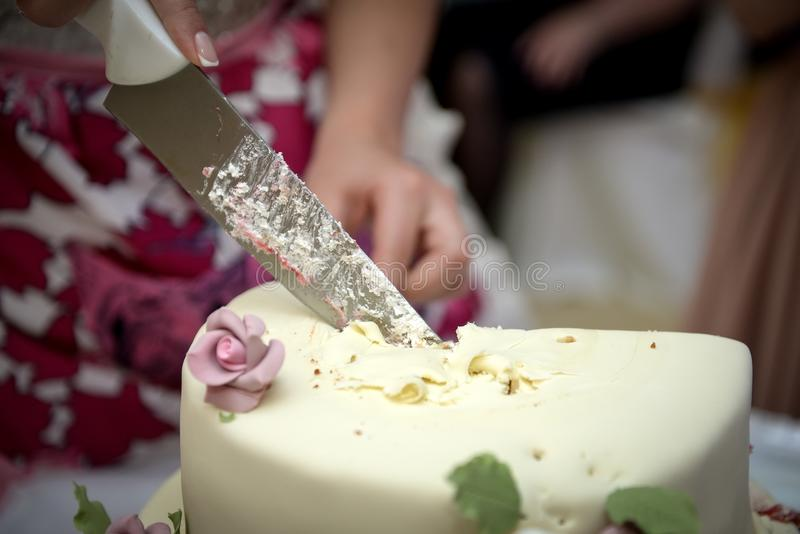 Bride and groom cut their wedding cake. Close up delicious wedding cake being cut by newly married couple stock image