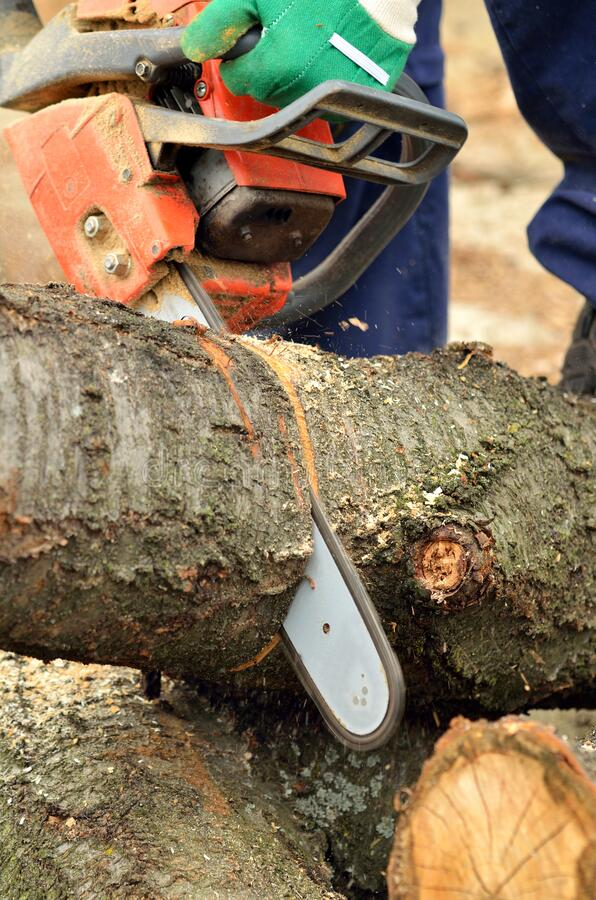 how to cut logs into lumber with a chainsaw