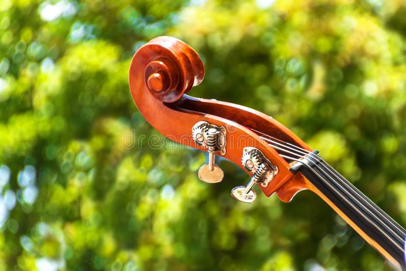 Close-up detail of double bass over green blurred background. Color detail with the head of a vintage double bass. Contrabass wood. En instrument details royalty free stock photography