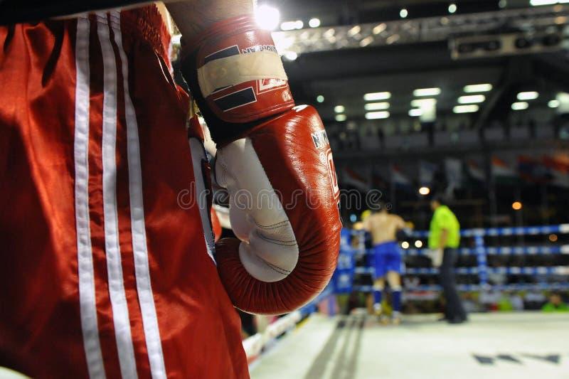 Muaythai World Championships royalty free stock images