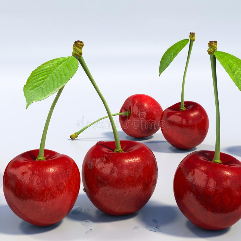 Delicious looking red cherries group, detailed macro. Close-up detail of five red sweet cherries, with stem and green leaf, with water droplets. White background stock illustration