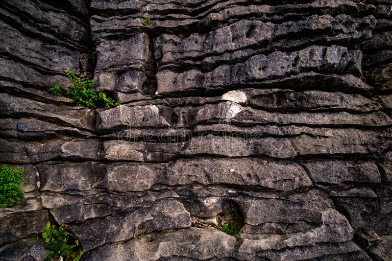 Close up, Detail of the Pancake rocks, West coast, New Zealand. Cloudy day royalty free stock photos