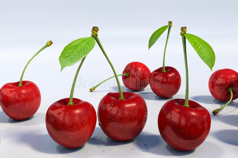 Delicious looking red cherries group, extremely detailed. Close-up detail of seven red sweet cherries, with stem and green leaf, with water droplets. White stock illustration