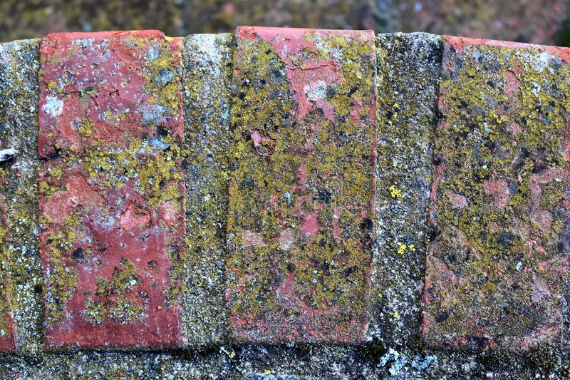 Close up detailed view on a cobblestone street pavement in high reoslution. Found in germany royalty free stock photography