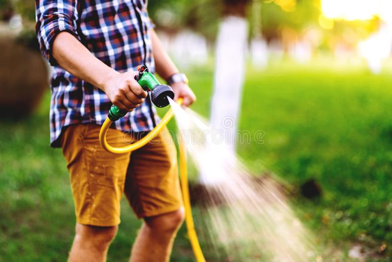 Close up details of gardener using hosepipe watering the lawn, grass and plants royalty free stock photo