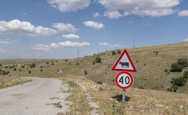 Close-up die van vee verkeersteken op een rijweg met rotsachtig landschap en groene gebieden in Centraal Turkije kruisen royalty-vrije stock foto