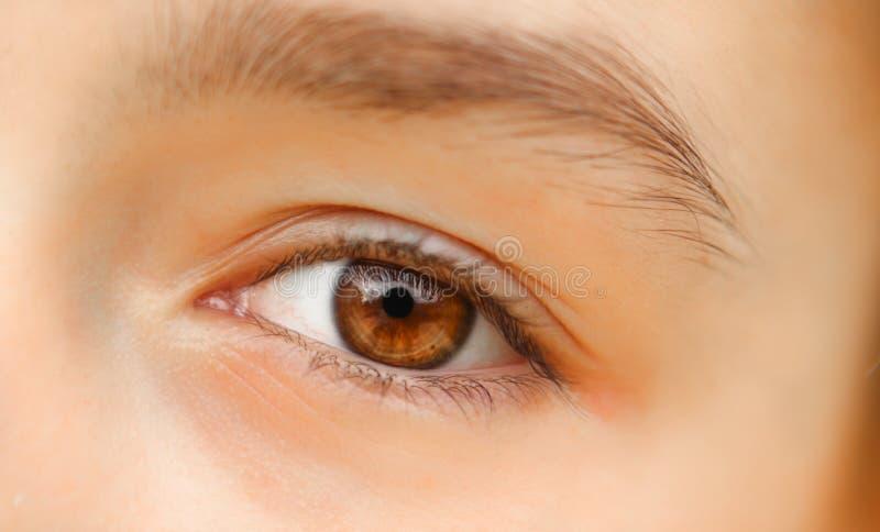 Close-up disparado do olho marrom bonito da menina com reflexão fotografia de stock royalty free