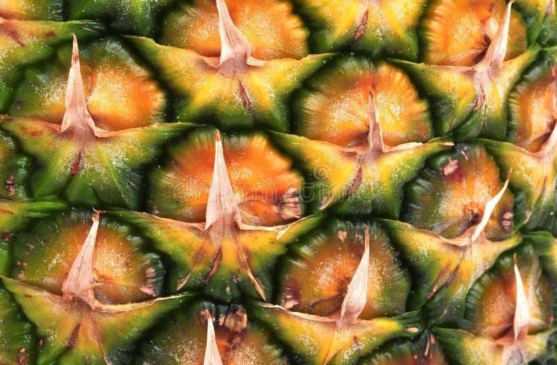 Close up do abacaxi fotos de stock royalty free