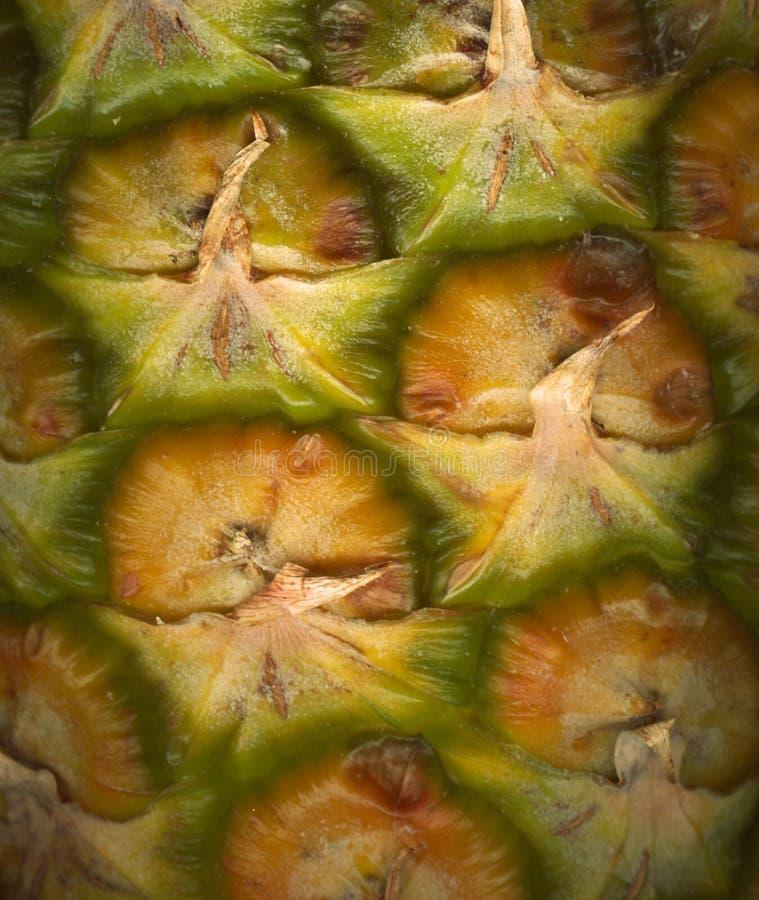 Close-up do abacaxi imagem de stock