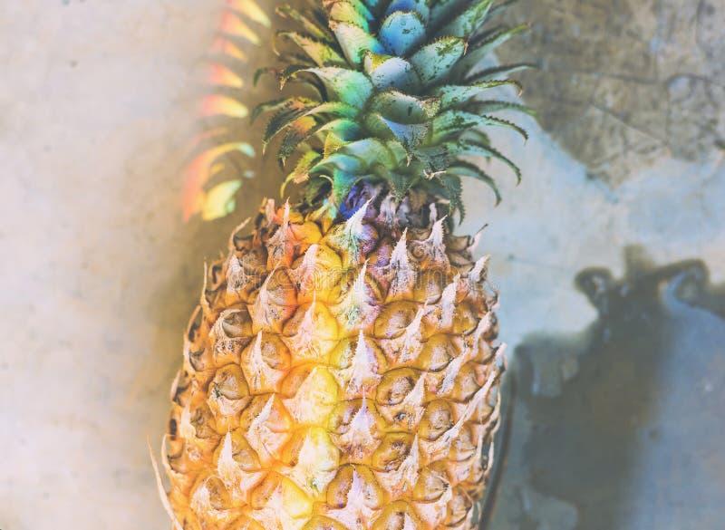 Close up do abacaxi fresco com luz de prisma do arco-íris imagens de stock royalty free