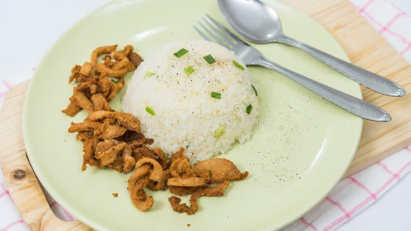 Close up do arroz e da carne de porco fritada fresca com sésamo, alimento tailandês fotografia de stock