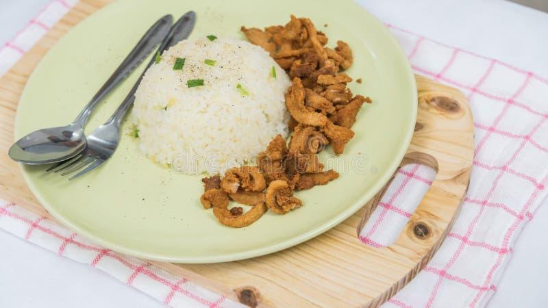 Close up do arroz e da carne de porco fritada fresca com sésamo, alimento tailandês imagem de stock