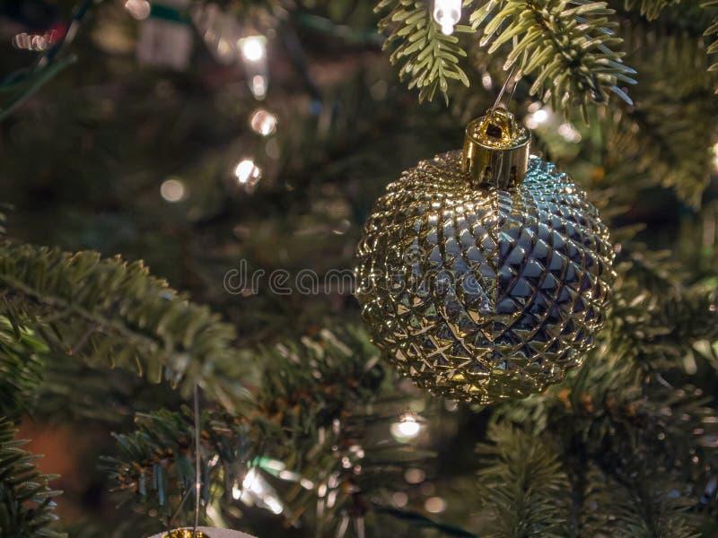 Close up do azul do Natal e da bola do ouro no ramo da agulha do pinho imagem de stock royalty free