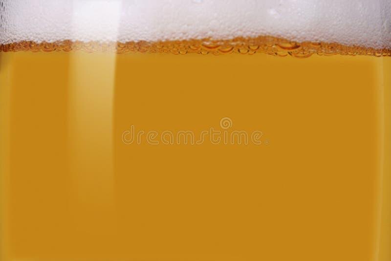 Close-up do bier leve foto de stock royalty free