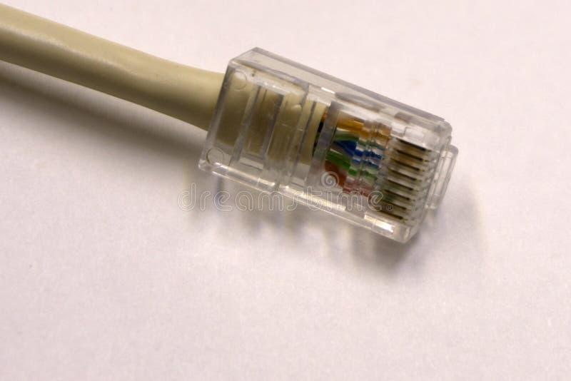 Close up do cabo ethernet azul da rede no fundo branco com espaço para o texto imagem de stock royalty free