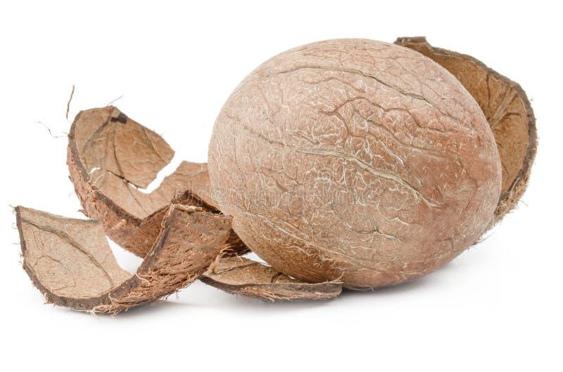 Download Close-up Do Coco Isolado No Fundo Branco Imagem de Stock - Imagem de suculento, aberto: 107525049