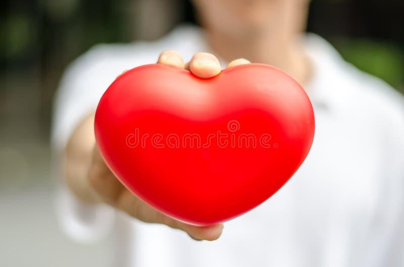 Close-up do coração vermelho no homem da mão do amor a dar imagem de stock