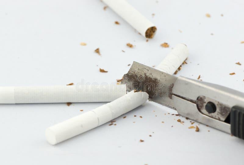 Close-up do cortador que corta o cigarro imagem de stock