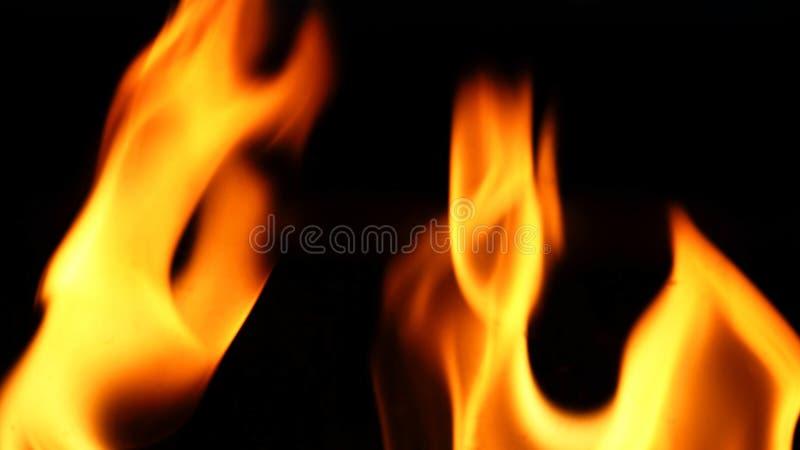 Close-up do fogo no fundo preto fotografia de stock royalty free