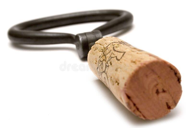 Close up do frasco de vinho (vista lateral) fotografia de stock royalty free