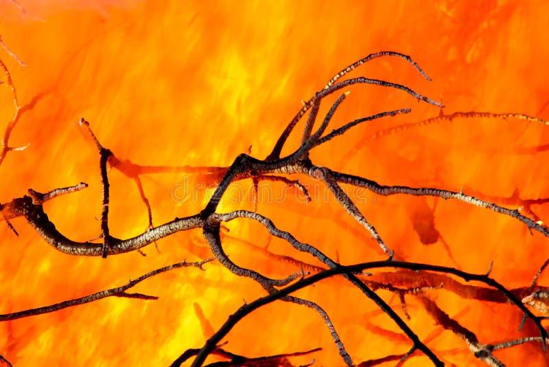 Close up do incêndio fotos de stock royalty free