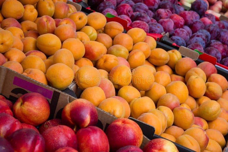 Close up do mercado de fruto - pêssegos, nectarina e ameixas foto de stock royalty free