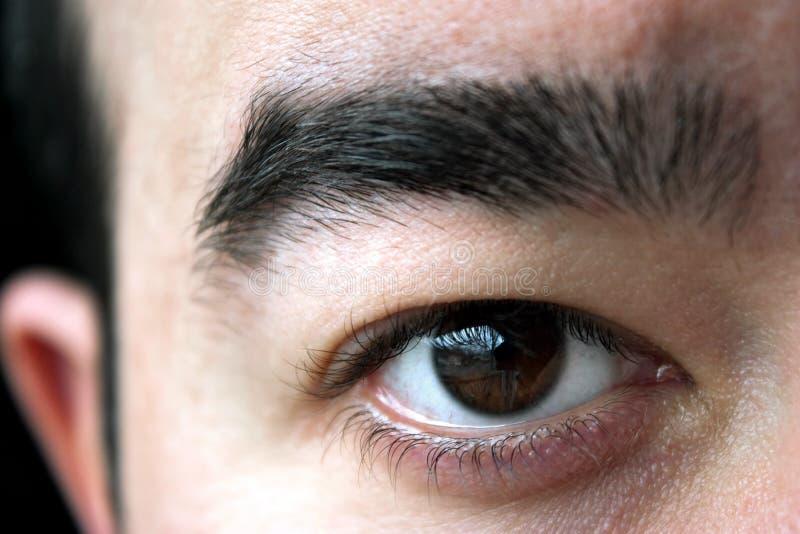 Close up do olho fotos de stock royalty free