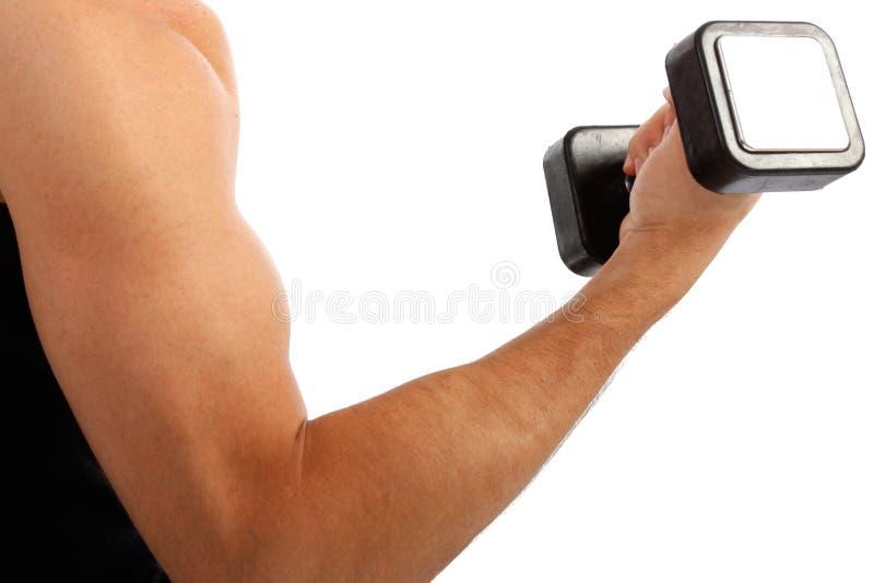 Close up do peso da terra arrendada de braço do homem novo fotos de stock