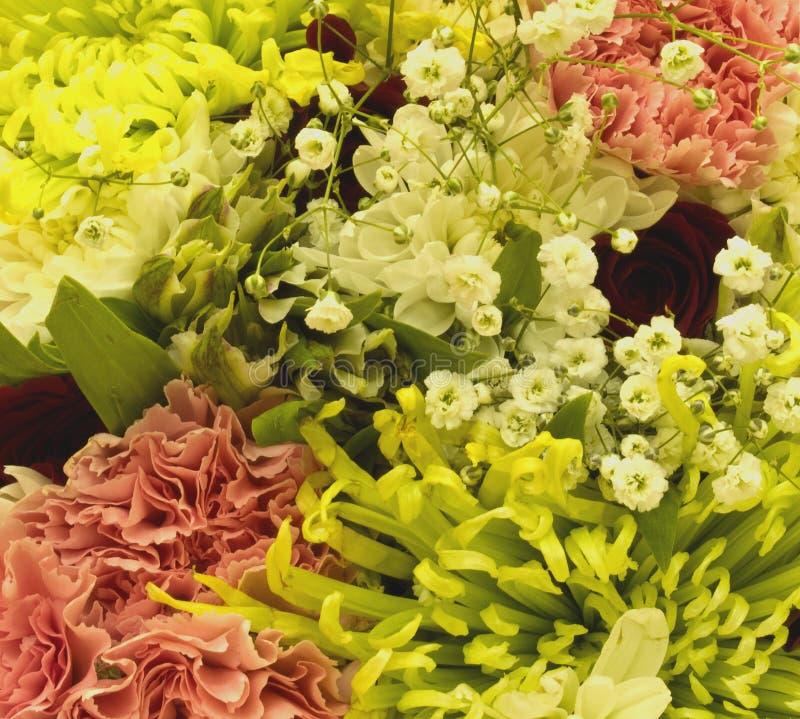 Close-up do ramalhete fotografia de stock