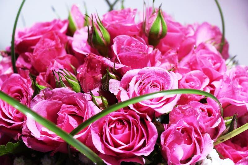 Close up do ramalhete elegante de rosas cor-de-rosa na flor fotos de stock royalty free